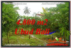 TANAH di UBUD DIJUAL MURAH 4,800 m2 di Ubud Payangan