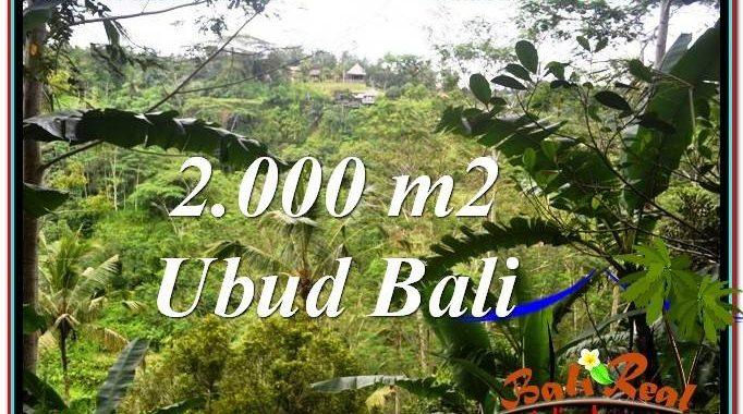 TANAH di UBUD DIJUAL MURAH 2,000 m2 di Ubud Payangan