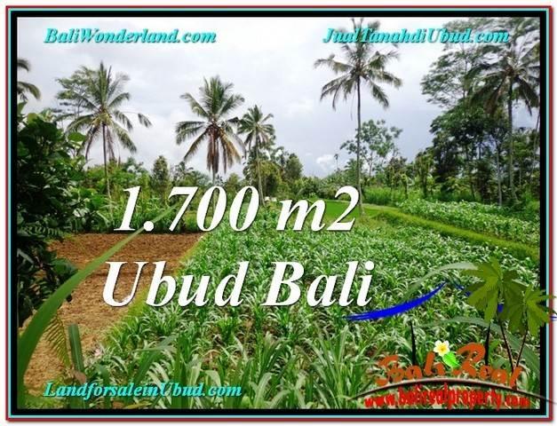 JUAL TANAH di UBUD BALI 1,700 m2  View kebun dan sawah