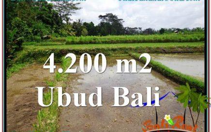 JUAL TANAH di UBUD BALI 4,200 m2 View kebun dan sawah