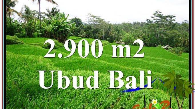 INVESTASI PROPERTY, TANAH di UBUD BALI DIJUAL MURAH TJUB564