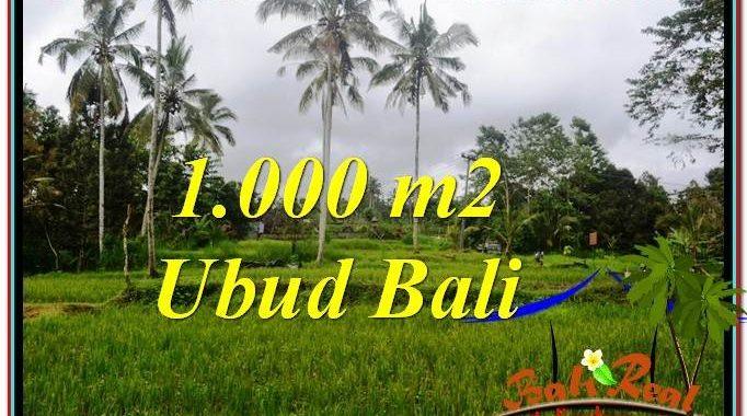 TANAH di UBUD BALI DIJUAL MURAH 1,000 m2 View Sawah