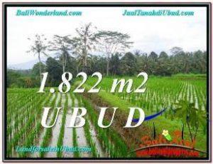 DIJUAL TANAH MURAH di UBUD 1,822 m2 di Ubud Payangan