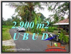 JUAL MURAH TANAH di UBUD 2,900 m2 di Sentral Ubud