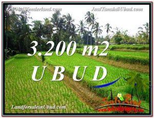 TANAH JUAL MURAH  UBUD 3,200 m2  View Sawah link Villa