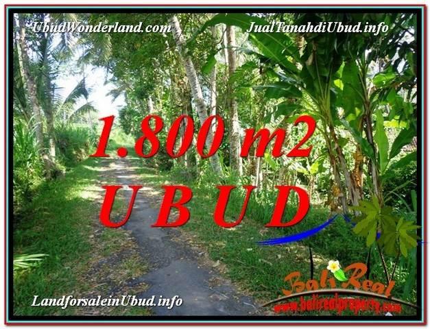 INVESTASI PROPERTI, TANAH MURAH DIJUAL di UBUD BALI TJUB597