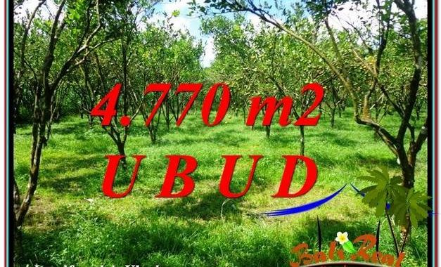 JUAL MURAH TANAH di UBUD TJUB598