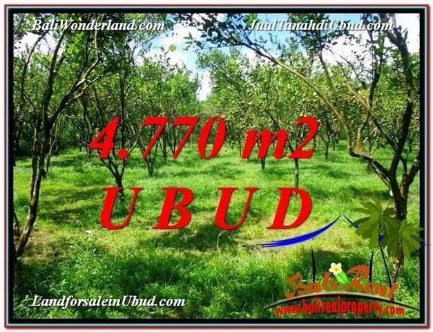 JUAL TANAH di UBUD 48 Are View kebun
