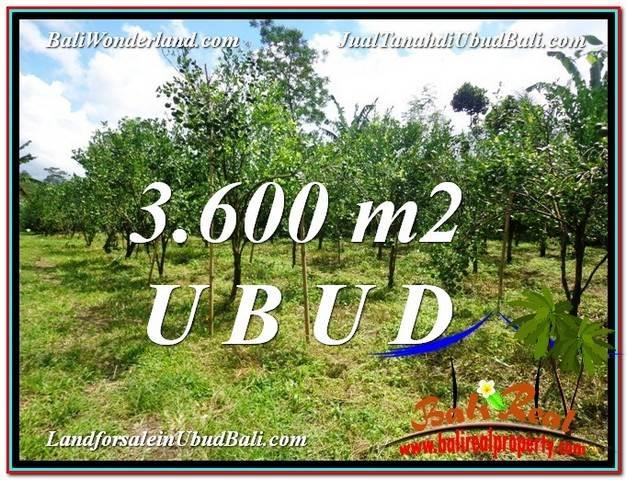 TANAH di UBUD JUAL MURAH 3,600 m2  View kebun