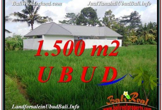 INVESTASI PROPERTY, TANAH di UBUD BALI DIJUAL MURAH TJUB600