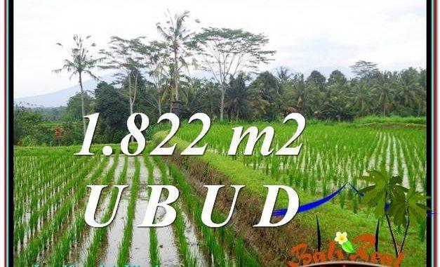 JUAL MURAH TANAH di UBUD Untuk INVESTASI TJUB574
