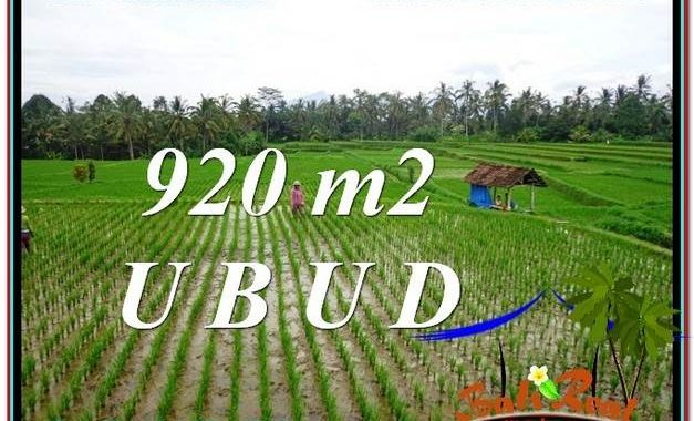 DIJUAL TANAH di UBUD Untuk INVESTASI TJUB575
