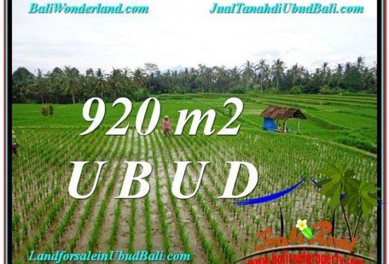 TANAH di UBUD DIJUAL MURAH Untuk INVESTASI TJUB575