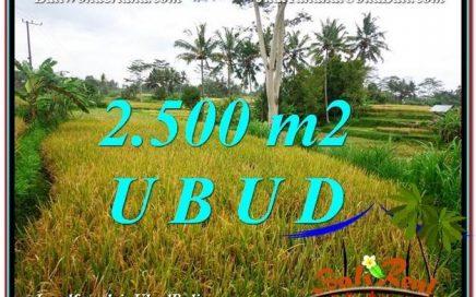 INVESTASI PROPERTY, JUAL TANAH MURAH di UBUD TJUB577