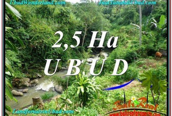 INVESTASI PROPERTI, DIJUAL MURAH TANAH di UBUD BALI TJUB579