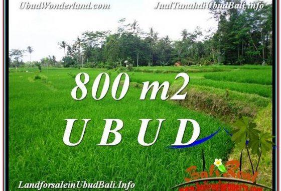 JUAL TANAH di UBUD BALI 800 m2 View Sawah dan sungai