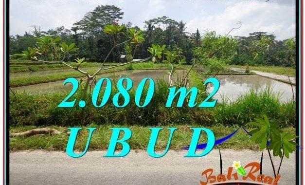 JUAL TANAH di UBUD BALI 2,080 m2 View Sawah