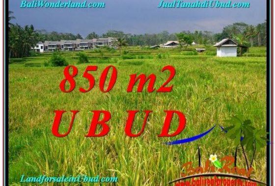 TANAH MURAH DIJUAL di UBUD 9 Are di Ubud Pejeng