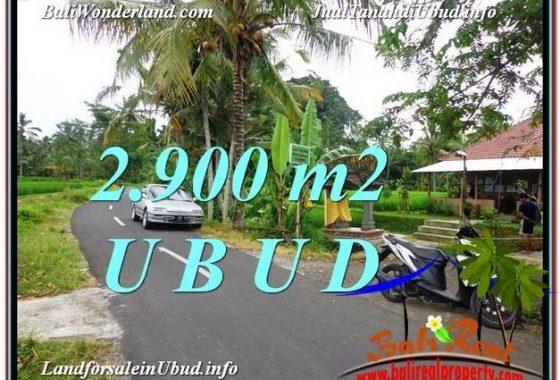 TANAH MURAH di UBUD BALI 2,900 m2 di Sentral Ubud