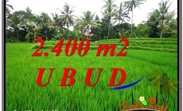 DIJUAL TANAH di UBUD 2,400 m2 di Sentral Ubud