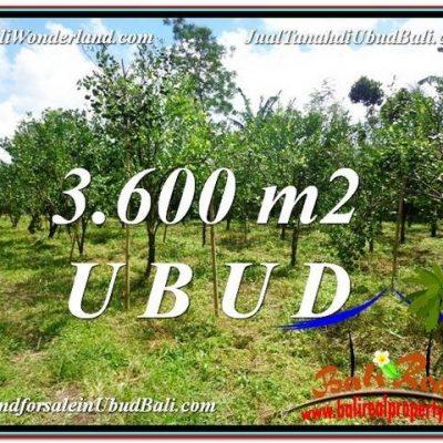 TANAH MURAH  di UBUD BALI DIJUAL 3,600 m2  View kebun