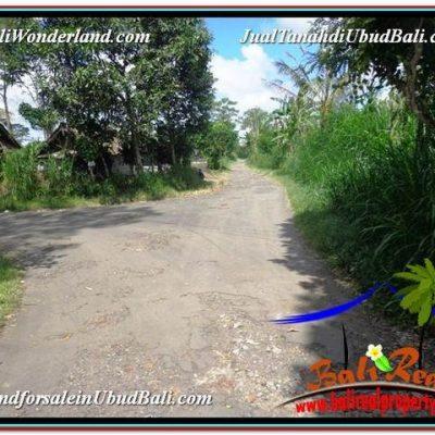 DIJUAL MURAH TANAH di UBUD BALI 3,600 m2 di Ubud Tegalalang