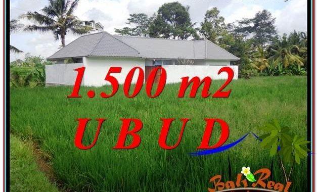 TANAH di UBUD BALI DIJUAL MURAH Untuk INVESTASI TJUB600