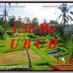 TANAH MURAH DIJUAL di UBUD BALI Untuk INVESTASI TJUB601