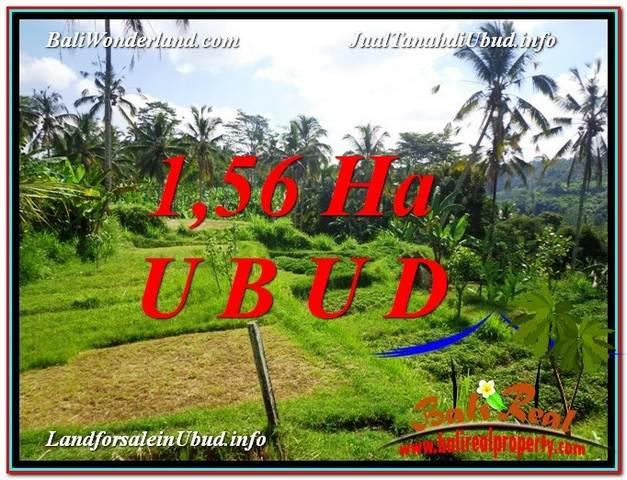 DIJUAL TANAH di UBUD 15,600 m2 di Ubud Payangan