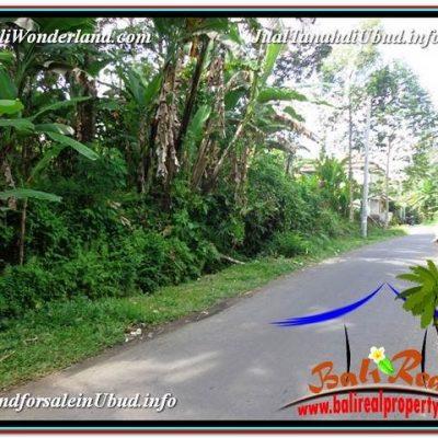 JUAL TANAH di UBUD BALI 156 Are View Sawah, Sungai dan Tebing