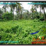 DIJUAL MURAH TANAH di UBUD BALI Untuk INVESTASI TJUB579