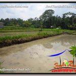 TANAH DIJUAL MURAH di UBUD Untuk INVESTASI TJUB582