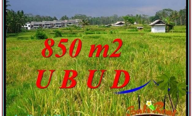 TANAH MURAH JUAL UBUD 850 m2 View Sawah link Villa