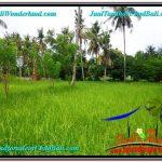 JUAL TANAH di UBUD 2 Are View Kebun Link Villa