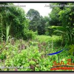 JUAL MURAH TANAH di UBUD 24 Are View Sawah link Villa