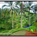 DIJUAL TANAH di UBUD BALI 13,800 m2 di Ubud Tegalalang