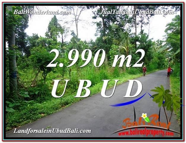 TANAH MURAH DIJUAL di UBUD BALI TJUB591