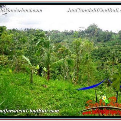 JUAL MURAH TANAH di UBUD 30 Are View kebun dan Tebing