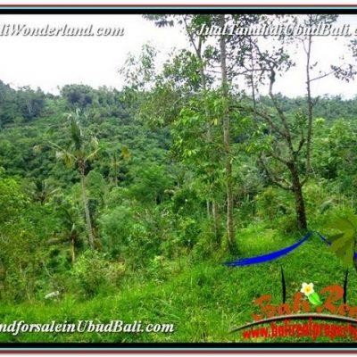 TANAH MURAH JUAL   UBUD 2,990 m2  View kebun dan Tebing
