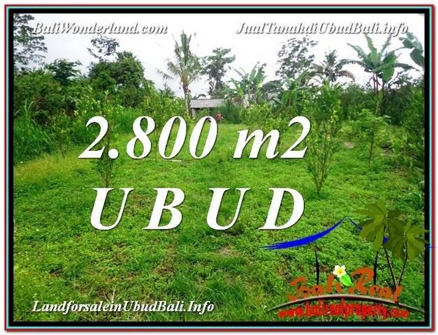 TANAH di UBUD BALI DIJUAL MURAH 2,800 m2  View kebun