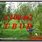 INVESTASI PROPERTI, TANAH MURAH DIJUAL di UBUD TJUB593