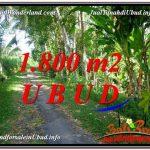 TANAH MURAH di UBUD BALI DIJUAL 1,800 m2 View Sungai dan Tebing link Villa