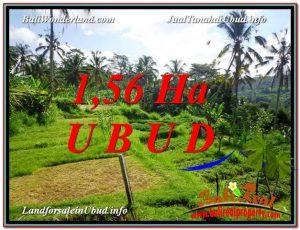 TANAH MURAH JUAL   UBUD 156 Are View Sawah, Sungai dan Tebing