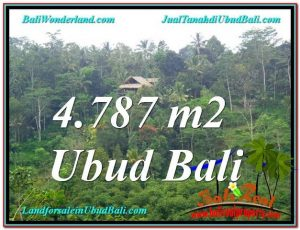 TANAH di UBUD JUAL MURAH 4,787 m2 View Kebun, Sungai dan Tebing