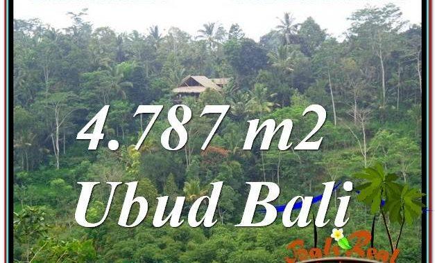 JUAL TANAH MURAH di UBUD 48 Are di Ubud Tampak Siring
