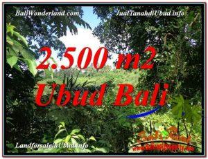 DIJUAL MURAH TANAH di UBUD BALI 25 Are di Ubud Pejeng