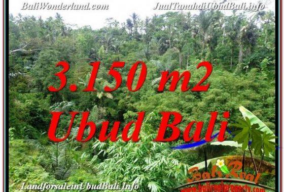 TANAH di UBUD JUAL 3,150 m2 View Tebing dan Sungai