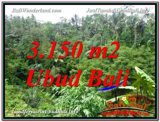 TANAH MURAH di UBUD BALI 3,150 m2  View Tebing dan Sungai