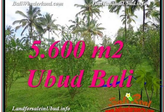 DIJUAL TANAH di UBUD TJUB609