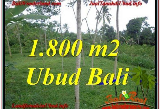 JUAL TANAH di UBUD BALI 18 Are View Tebing dan kebun